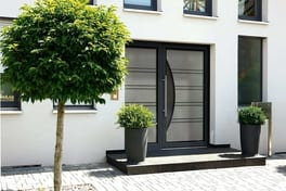 Single sash residential door with side frame